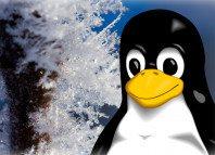 Zimowisko Linuksowe 2015 - wypis