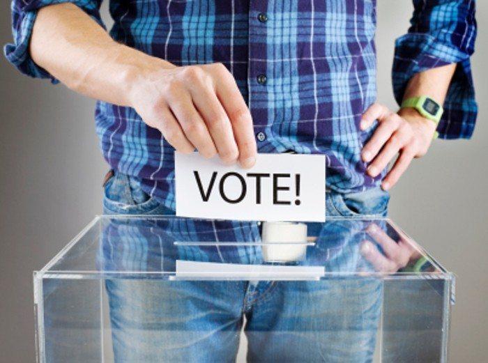 OpenPKW - głosowanie
