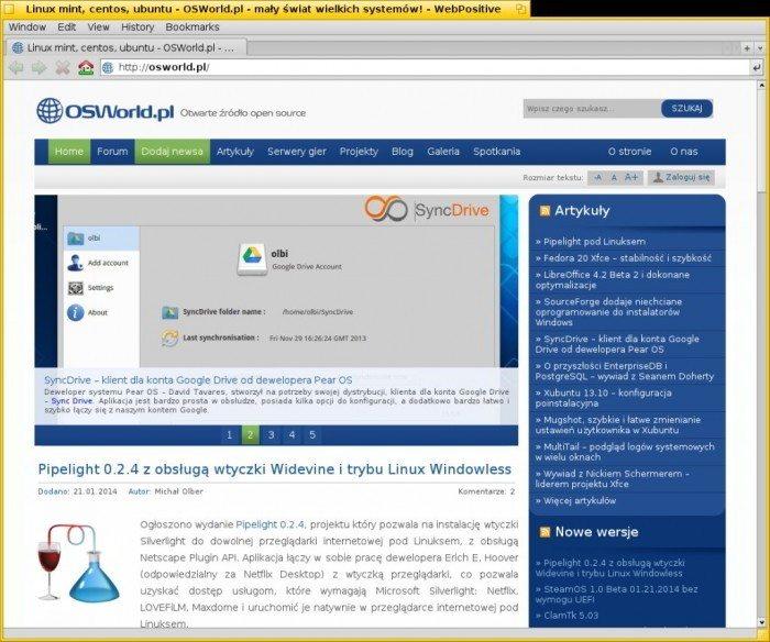 Projekt Haiku w 2013 roku - przeglądarka WebPositive