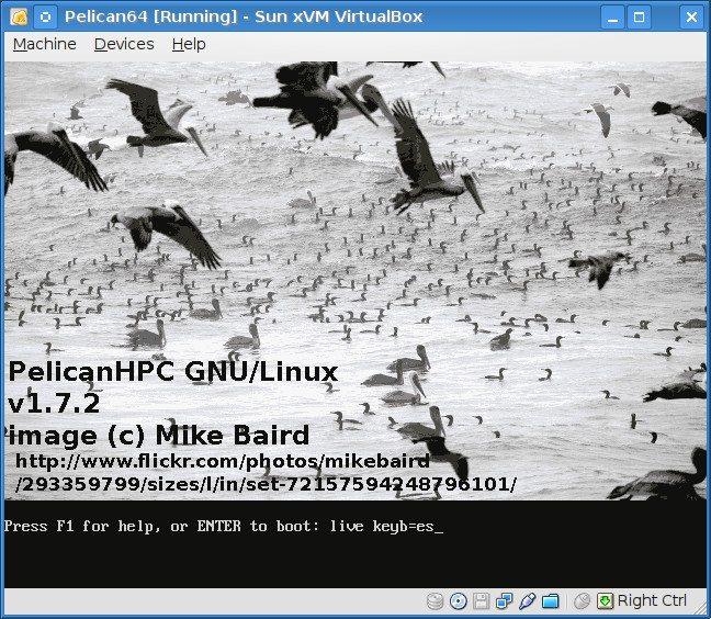 PelicanHPC