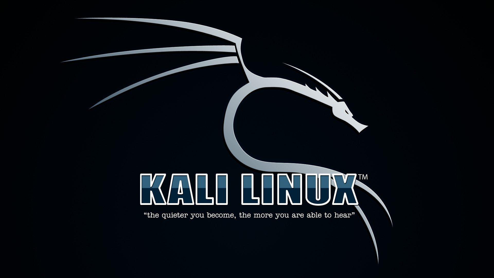 Kali Linux 1.1.0 - tapeta