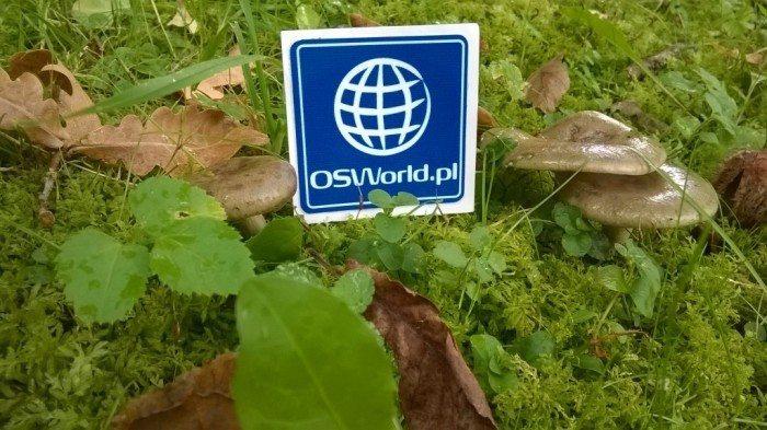 OSWorld na wakacjach II - Arkadiusz Orzeł